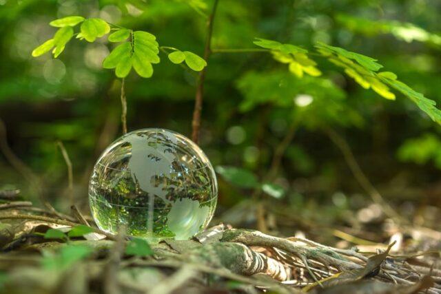 Conseils pour réduire votre impact environnemental sur Internet
